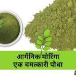 ऑर्गेनिक मॉरिंगा, Organic Moringa