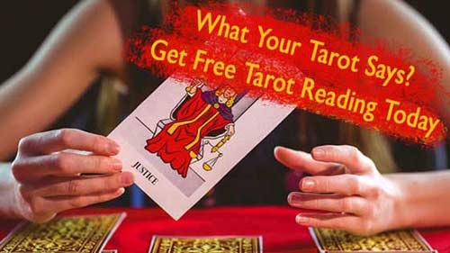 Tarot Card Reader in Jaipur