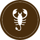Today Horoscope Scorpio