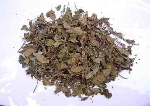 Gurmar Leaf Powder